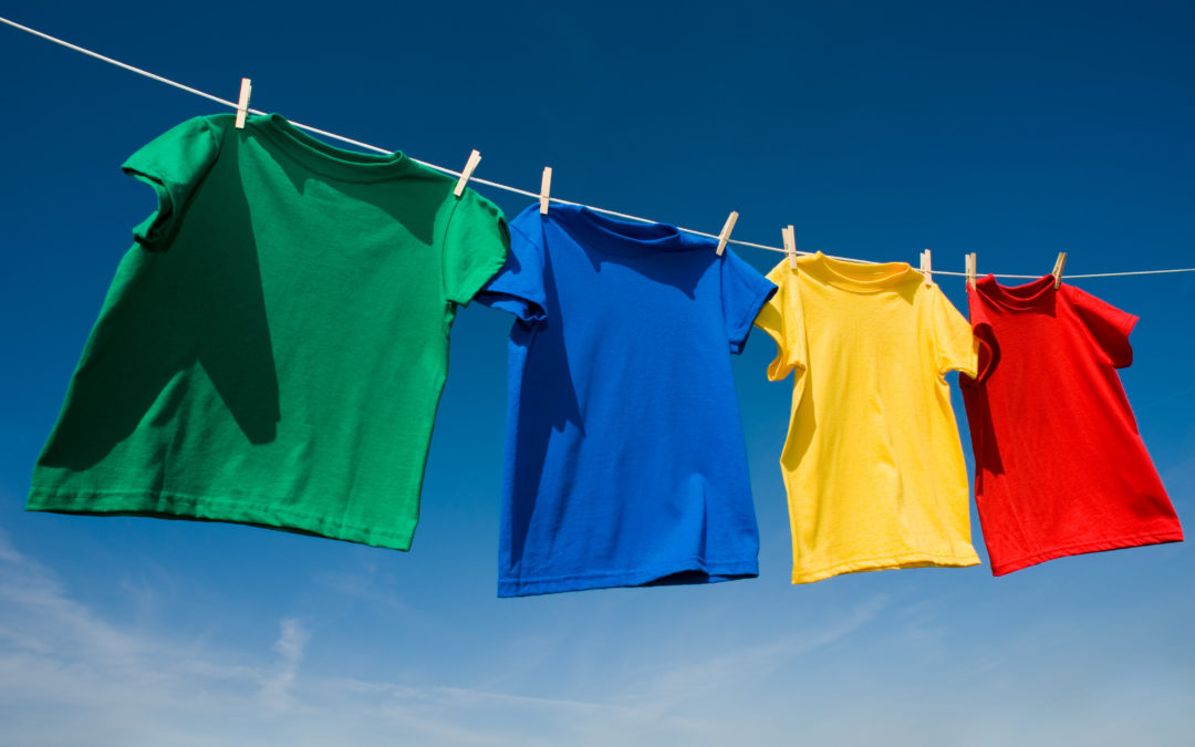 Learn More About Skyline Enterprises and our Clothesline System
